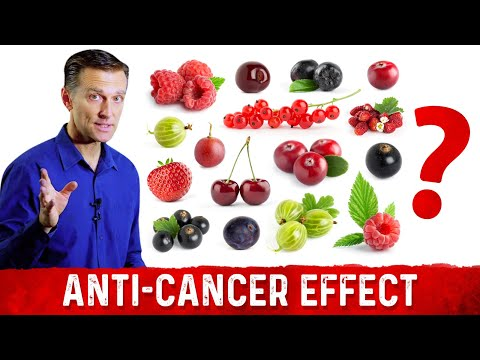 What Berry Has the Strongest Anti-cancer Effect?